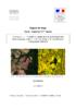 Conception d'une méthode radar... - pdf auteur - application/pdf
