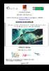 Utilisation d'image THR ... - pdf auteur - application/pdf