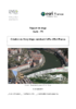 Création de Story Maps - pdf auteur - application/pdf